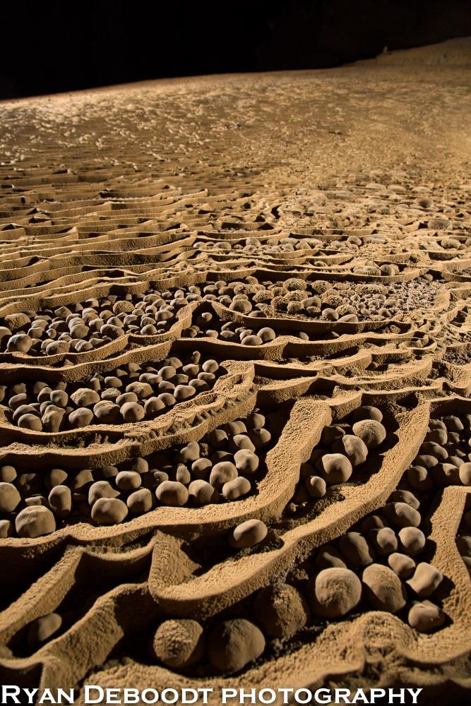 Cave pearls in Hang Son Doong.